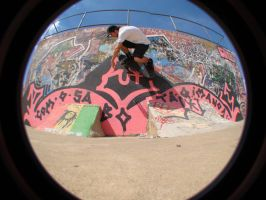 Wall ride by skaater