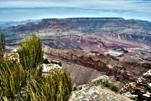 Grand canyon with river by mickeybob00