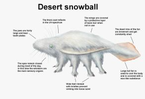 REP: Desert Snowball by Ramul