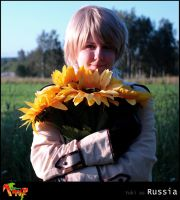 APH Cosplay: Sunflowers by Feffelini