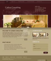 Website for Consulting company by Areeb89