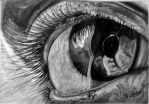 Realistic Eye by Avishjoseph