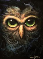 Owl by cingram