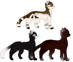 Cat adopt Batch 2 CLOSED by ToRu-Adopt