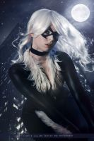 Black Cat - Marvel Comics by WhiteLemon