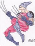 wolverine by bahmont