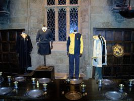 Cedric Diggorys costume for the Goblet of Fire by hellonlegs
