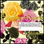 Photoshop brushes~ Roses by KlaraKay