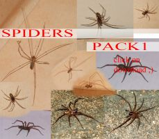 Spiders PACK 1 by whynotastock