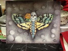 Moth by IleaRice