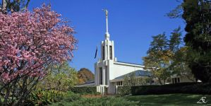 Sydney LDS Temple by AEast