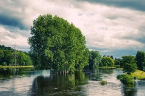 River Trent by Engazung