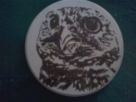 Pyrography - Owl Face by naaxha
