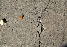 Ground Texture 04 by Aimi-Stock