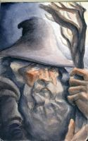 Gandalf the Grey by EuchridEucrow