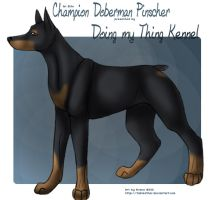 Commission: Doberman Pinscher by tailfeather