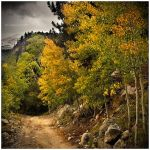 The Trail To Autumn by kkart