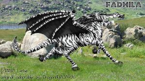 Fadhila - Zebra Dragon by lethe-gray