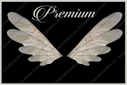 Fairy Wings png by TinaLouiseUk