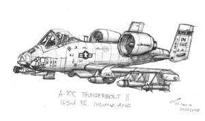 Thunderbolt II by contrail09