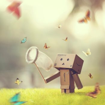 The Butterfly Catcher by arefin03