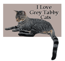 I Love Grey Tabby Cats by Loulou13