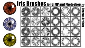 Iris Brushes for GIMP and Photoshop by ArcherBlack