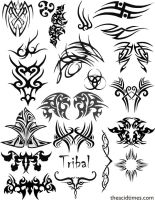 Tribal Vector Set 1 by AcidaSeee