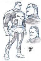 PUNISHER by Wieringo