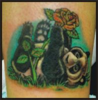 Panda cover up by zombiebe10u