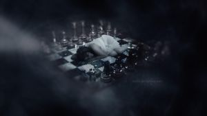 chess by Ola55