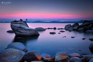 Lake Tahoe - United States - Bonsai Rock by Furiousxr