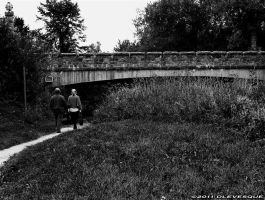 Study in bw...Lovers Lane by imonline