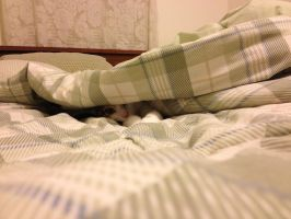 Are You Coming To Bed Yet, Mama? by DarlingChristie
