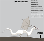 Fantasy Race: White Dragon by Kurvos