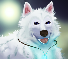Sky-the wolf with blue eyes (contest) by Scarlet2Summer
