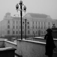 Grey days in black and white by katszp