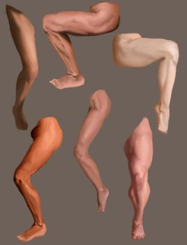 Legs Study by Orchetto