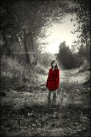 Stay. by sa-photographs