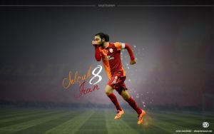 Selcuk Inan Wallpaper 2013 by elifodul