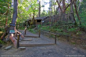The Oregon Vortex 01 by BlightProductions