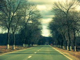 On the road again by dianora