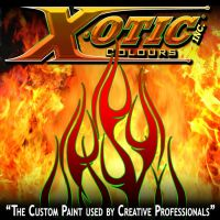XOTIC Colours 8'x8' Backdrop by sequential