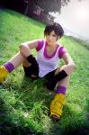 Videl Dragonball z Cosplay by Caydance