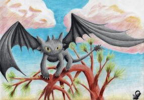 It's me, Toothless by Saliona93