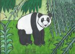 Request: The Giant Panda by GoroKai