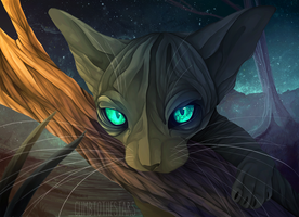 Space Cat - AP by ClimbToTheStars