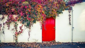 Red Door Fall Wall by Pierre-Lagarde