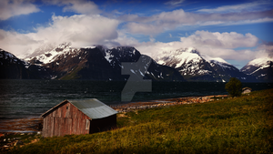 Northern Norway by Mycelius