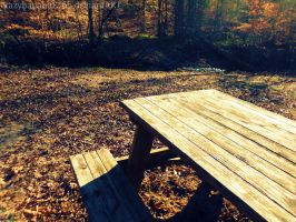 Old Picnic Bench-2 by hourglass-paperboats